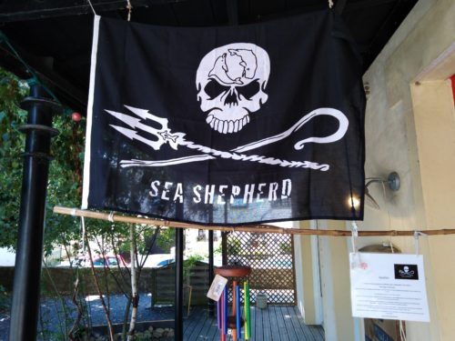 sea shepherd drapeau chemin eveil